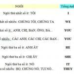 Văn phạm Tiếng Anh căn bản- Bài 2: Đại từ Nhân Xưng- Tính từ sở hữu