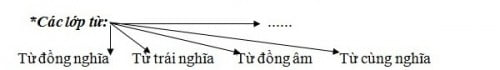 các lớp từ