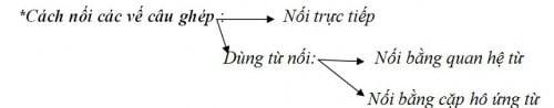 nối câu