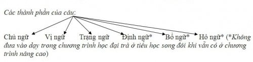 thành phần câu
