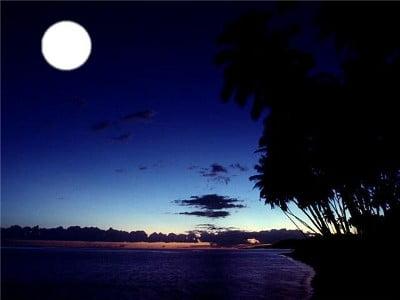 the moon light
