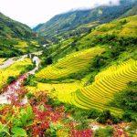 Bài 2: Đất nước nhiều đồi núi (VN)