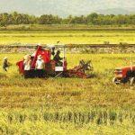 Bài 7: Chuyển dịch cơ cấu kinh tế ở nước ta