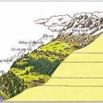 Bài 18: Sinh quyển, các nhân tố ảnh hưởng tới sự phân bố và phát triển của sinh vật
